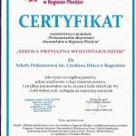Certyfikat wolontariat